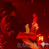 Elephants in Paradise CD-Release Chelsea 2018 - BUMBLEBEE